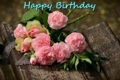 Fødselsdags ønsker