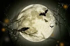 halloween måne