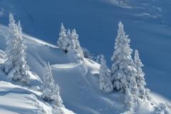 Snedækket skråning